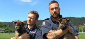 Hot cops with puppies: Southern District cops attract likes after posing with puppies